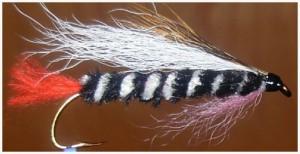 Streamer Fly